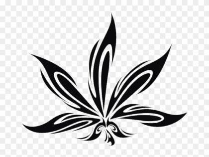 Ley de Regulación del Cannabis